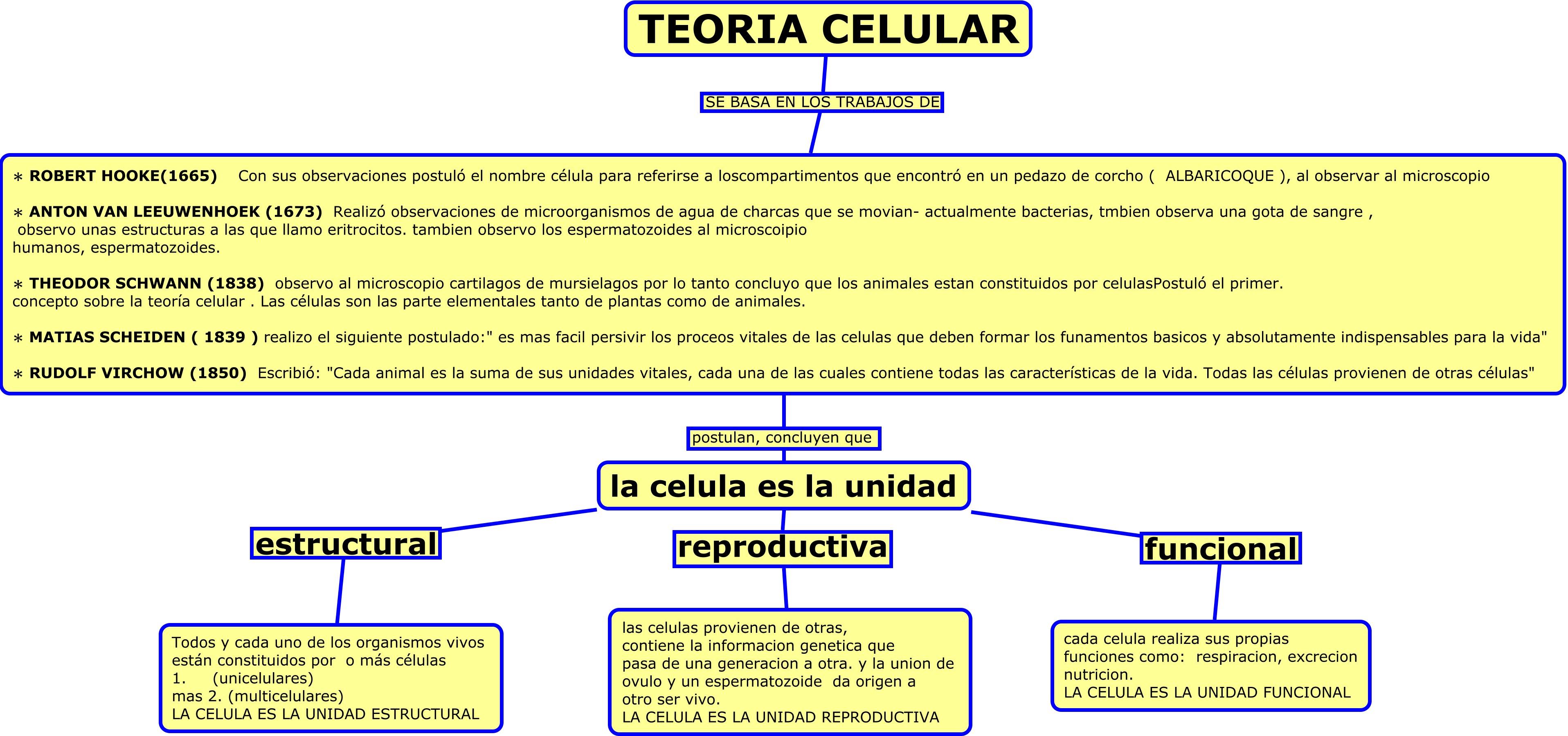 6 1 Diferenciación Celular Lessons Tes Teach